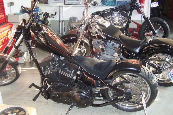 Custombike4
