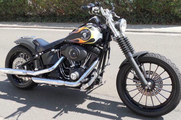 Custombike7
